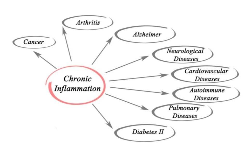 Zonnebloemolie veroorzaakt chronische ontstekingen