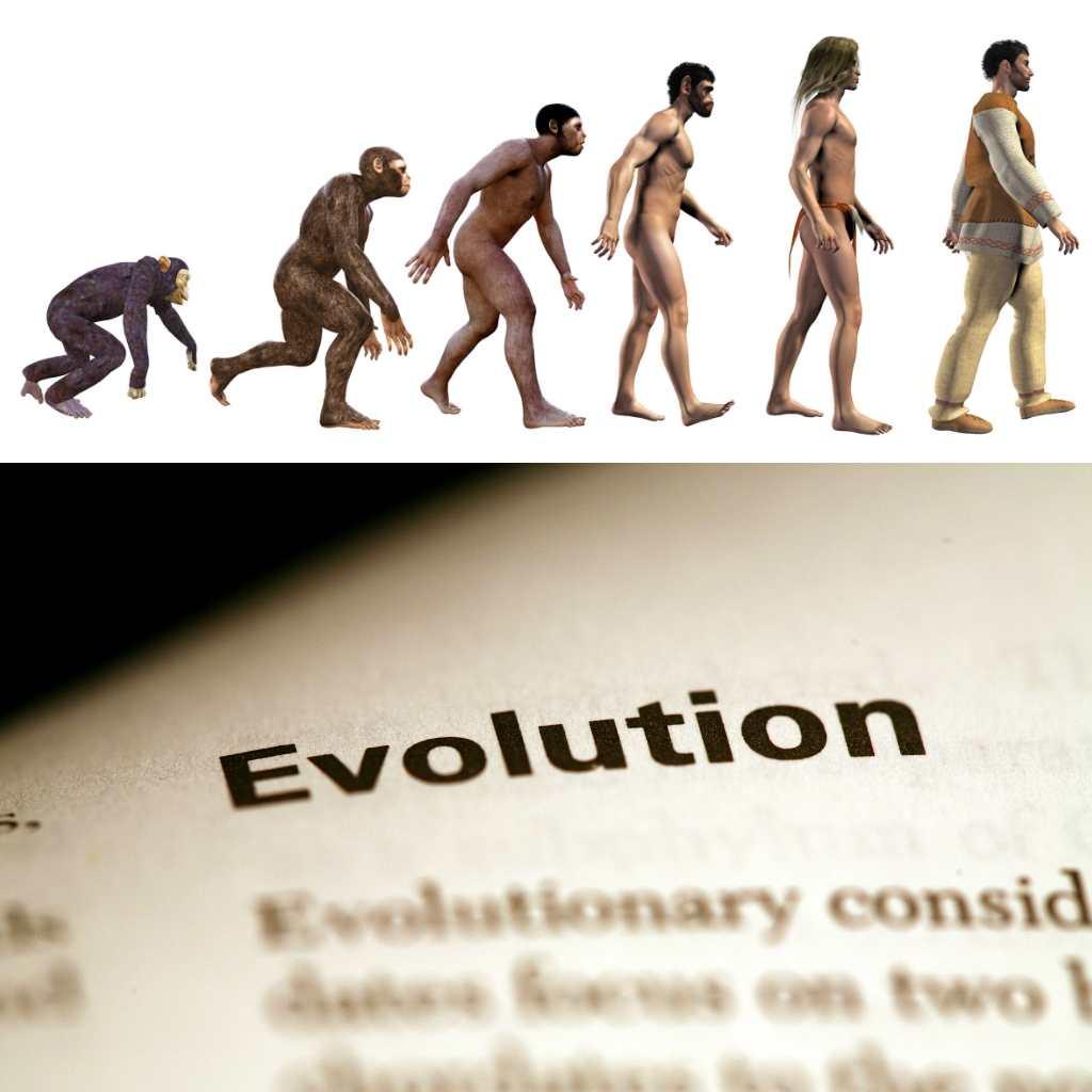 Evolutie: onze stofwisseling kan zich aanpassen