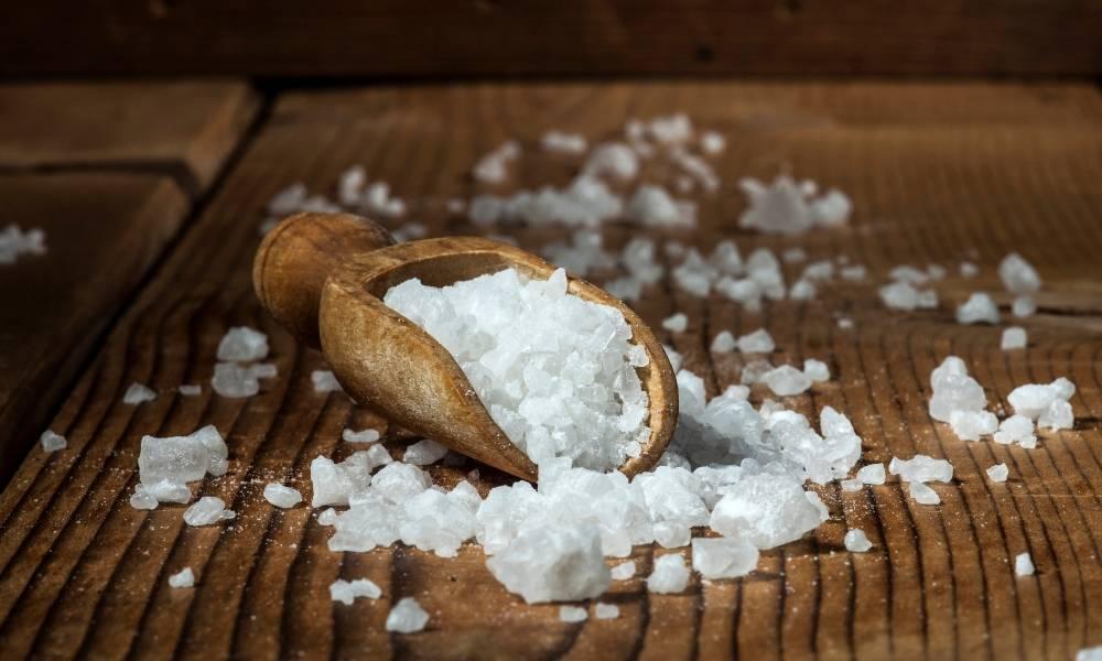 Ons lichaam kan niet zonder zout