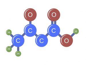Betahydroxybutyrate